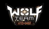 joygame kurumsal medya kiti wolfteam logo