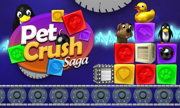 joygame flash oyun html 5 zeka oyunlari pet crush saga ucretsiz oyna cover