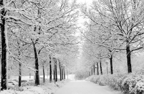 Kış Aşkı Bir Başka